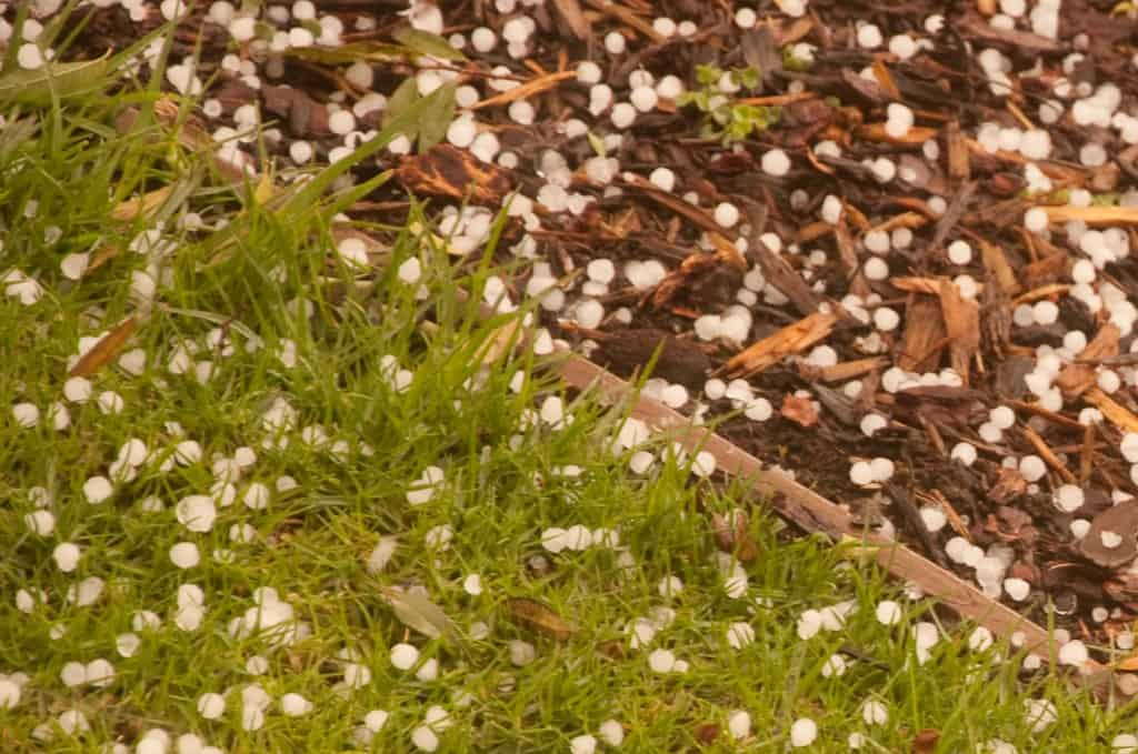 Hailstones in CulverCity- Photo by Robert Rissman