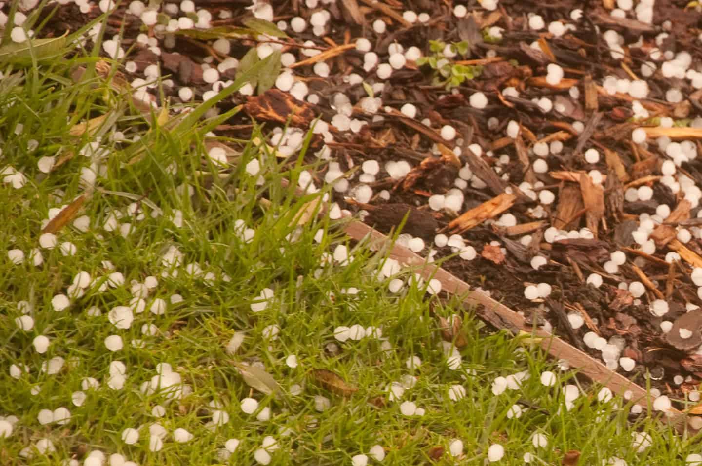 Hailstones in CulverCity- Photo by Robert Rissman
