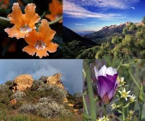 Sierra Club Presents Santa Monica Mountains