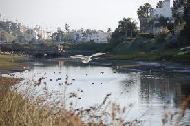 Ballona Creek Clean-Up Needs Volunteers