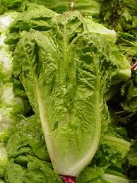 Tainted Romaine @ Vons & Pavilions (The Tip of the Iceberg)