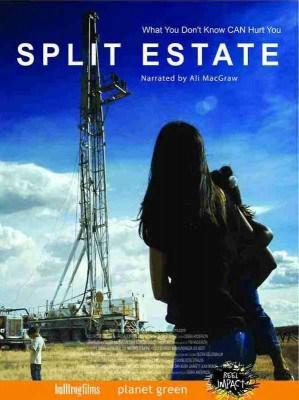 Split Estate movie poster