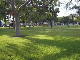 Green Space – Public Parks Need YOUR Input – Sept. 27