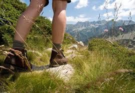 Sierra Club to Host Hiking Adventure – July 11