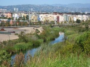Bluff_Creek_and_Playa_Vista