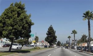 Trees must fall to make way for space shuttle's L.A. road trip