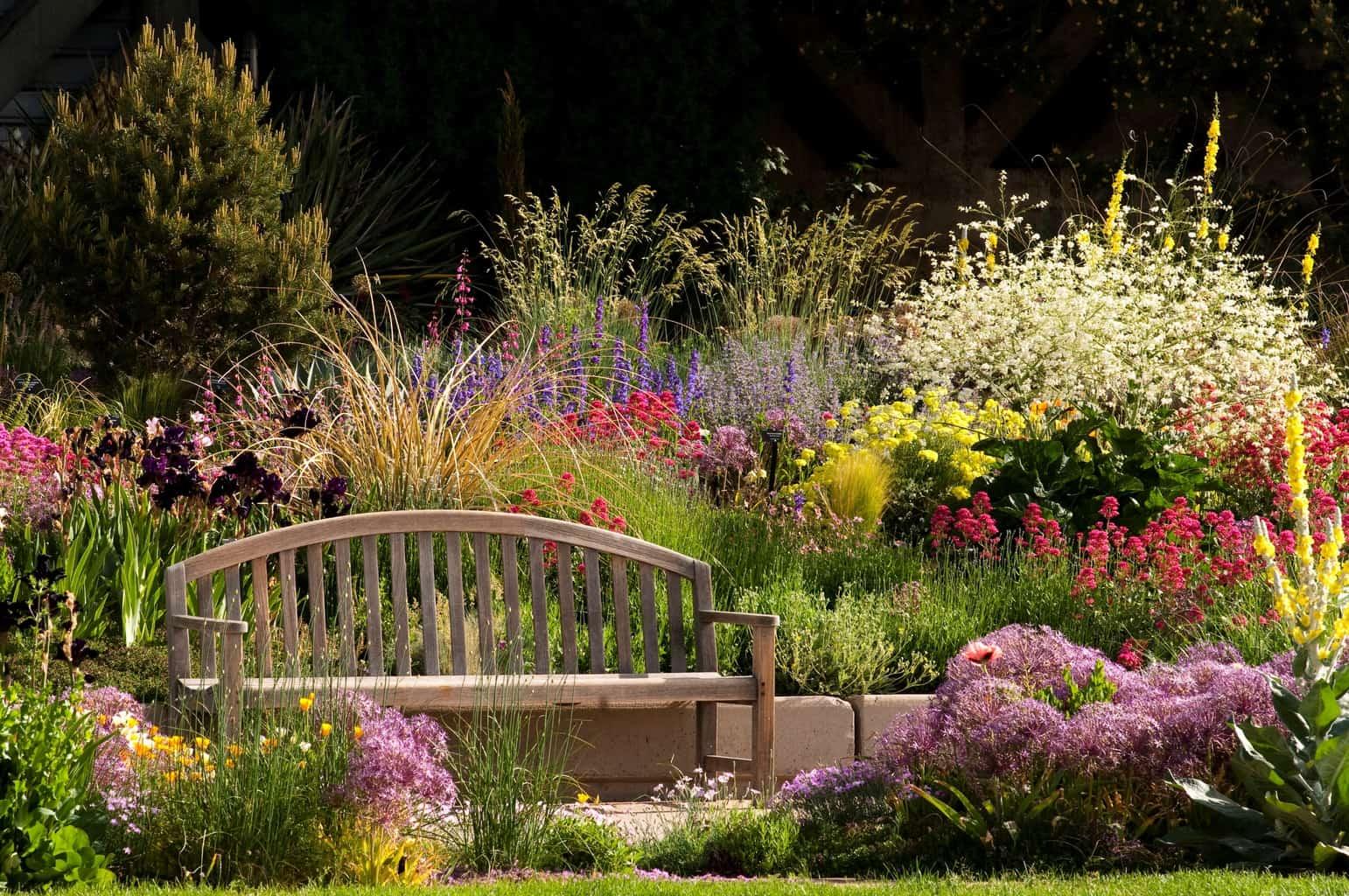 Culver City Offers Smart Gardening Workshops | Culver City Crossroads
