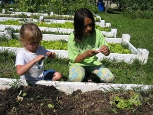 Be a Good Neighbor – Motor Ave. Needs Your Vote for Urban Garden Grant