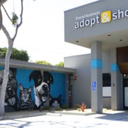 Adopt & Shop Cuts the Ribbon on Grand Opening