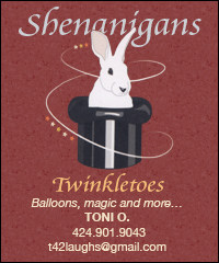Shenanigans...balloons, magic and more...424-901-9043
