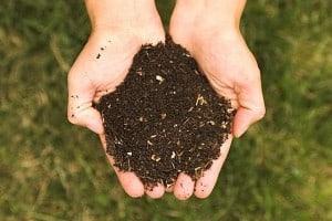 Culver City Compost – Closing the Circle
