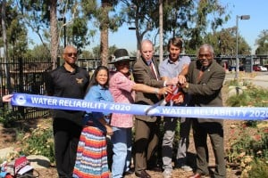 Water Garden Debuts on Dominguez Hills Campus