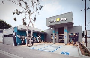 Adopt & Shop to Celebrate First Anniversary in Culver City