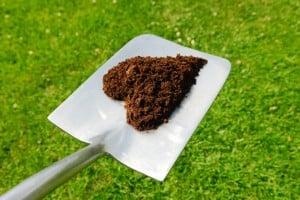 compost_heart www