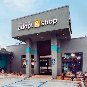 Adopt & Shop 'Howl'oween' Celebration