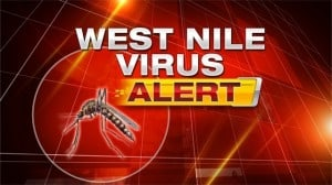 West Nile Virus Still Active in LA County – Get the Facts