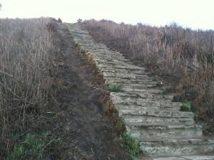 steps-baldwin-hills-scenic-overlook