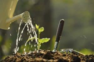 West Basin Offering Greywater Workshops