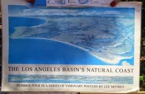 Plans to Restore Ballona Wetlands Support El Segundo Blue