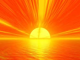 Of Sunlight  – Shaina Levin