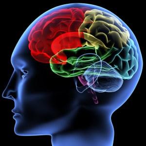 brain-health-care1