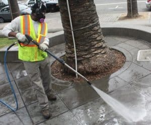 Culver City Joins Bay Foundation's Restaurant Program Preventing Stormwater Runoff Pollution