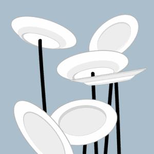 spinningplatesdetail