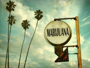 marijuanasignpalmssm