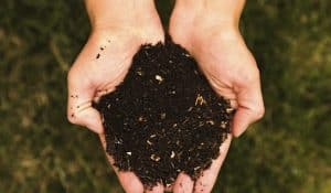 Free Compost! May 6 @ Bill Botts