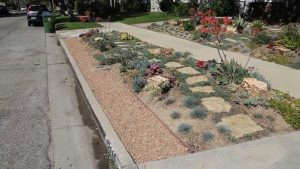 West Basin & Public Works Offer Turf Removal Classes