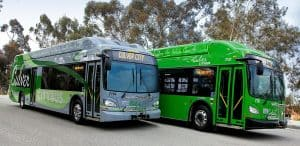 Culver_CityBus_Rapid_and_Local_Buses