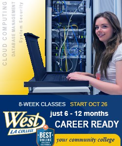 WLAC Computer Sciemce Degrees